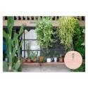 GO GREEN –Plants make people happy-